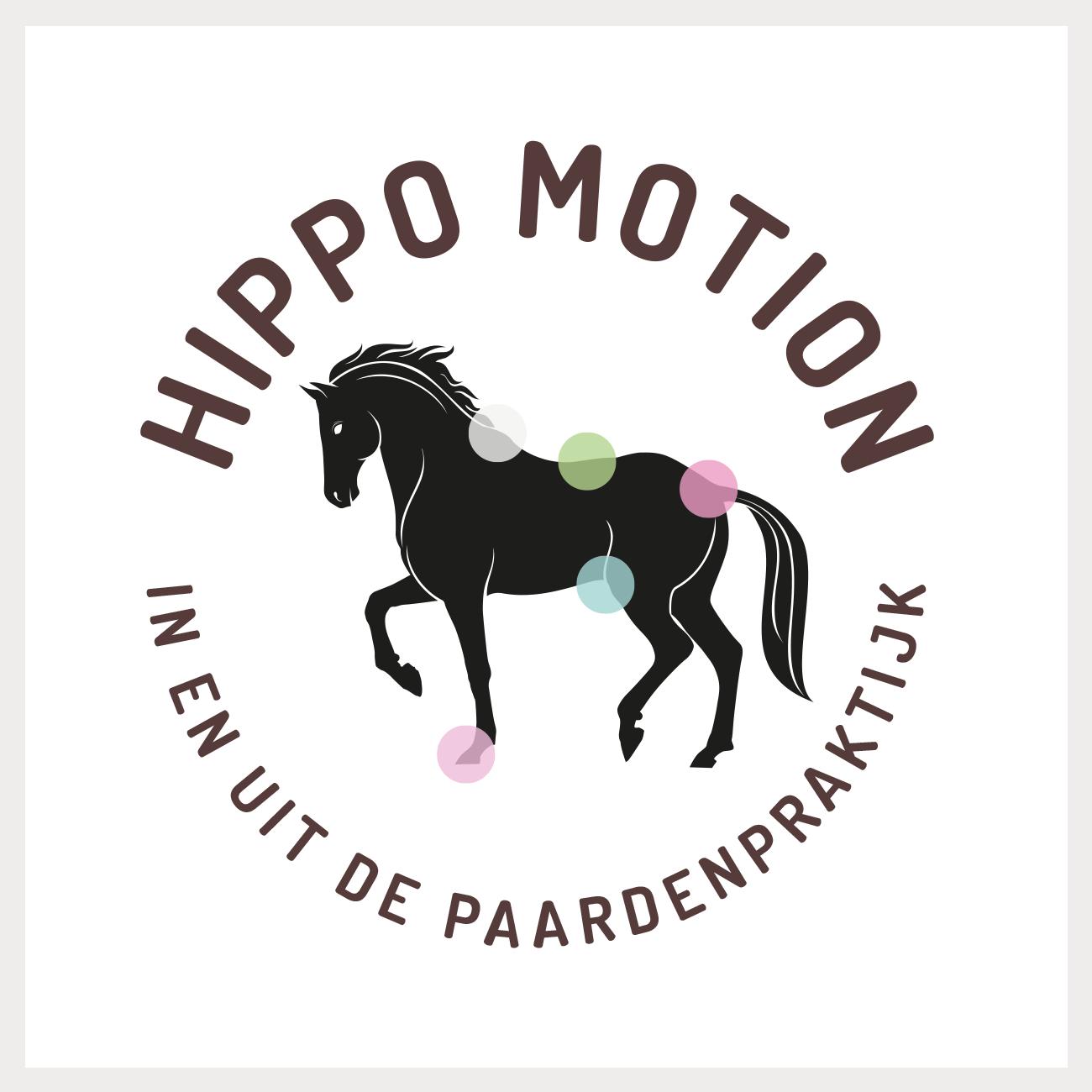 Identiteit voor HippoMotion